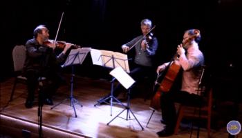 2020-09-27 Bradley Creswick Beethoven Trio
